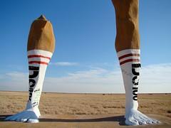 BIG DS106 Socks (iamtalkytina) Tags: socks ds106 jimgroom sockgate