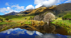 Reflections At Aro-Ha (Stuck in Customs) Tags: aroha horizontal colour color yoga retreat glenorchy queenstown southisland newzealand southernalps pigeonisland snow view mountbonpland kinloch mountlarkins glaciallake wakatipu roto manamoana reflection pond tussock sky clouds farmland grasses green blue purple red orange island relaxation spa sonyilce7r sony paradise treyratcliff trey ratcliff stuckincustomscom rr dailyphoto outdoor water hill mountain mountainside landscape lake november 2014 p2016