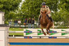 AMP_6488_1 (Amparo Hervella) Tags: espaa horse caballo spain nikon equestrian hpica comunidaddemadrid valdemoro d7000 nikond7000