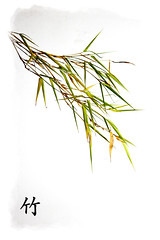 Bamboo_2small (Peter from France) Tags: nature bamboo stillife leafs