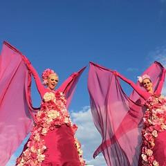 flower bombs bloem steltenlopers the s factory 2016 6 (WWW.THESFACTORY.EU E : info@thesfactory.eu T :06-2) Tags: show pink zomer salsa bloemen stiltwalker straattheater roze bloem stiltwalkers zomers stelten stelzentheater steltloper steltlopers caribisch steltenlopers steltenloper steltenact suzannevanrooy steltenacts steltzenläufer