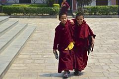 Smiles in Pharping (Antonio Cinotti ) Tags: nepalroutes nepal asia nikond7100 nikon d7100 nikon1685 pharping monks buddhistmonks