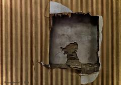 Maison P (Marian Smeets) Tags: wallpaper abandoned netherlands wall decay nederland muur urbex behang 2016 verlaten vervallen urbexexploring maisonp nikond750 mariansmeets huizep