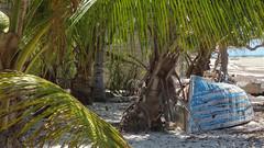 Dhow Under the Palms, Vilanculos, Mozambique (HDR) (dannymfoster) Tags: africa beach palm mozambique dhow mocambique vilankulo vilanculos
