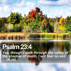 Daily Bible Verse - Psalm 23:4 (daily-bible-verse) Tags: blessed believe thankful scriptures christianquotes photooftheday