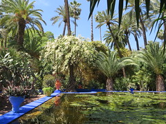 Marrakesh Majorelle_9909 (JespervdBerg) Tags: holiday spring 2016 africa northafrican tamazight amazigh arab arabic moroccanstyle moroccan morocco maroc marocain marokkaans marokko marrakech marrakesh majorelle