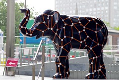 Herd of Sheffield elephant sculptures (17) (Simon Dell Photography) Tags: herdofsheffield herdof sheffield herd eliphants statues town city sculptures colorfull awsome 2016 trail see find them locations