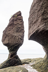 The Hopewell Rocks, also called the Flowerpots Rocks or simply The Rocks (Jim 03) Tags: hopewell flowerpots rock rocks tidal formations ocean new brunswick 4070 bay fundy cape marine wonders world tides jim03 jimhoffman jhoffman jim wwwjimahoffmancom wwwflickrcomphotosjhoffman2013