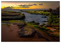 2M9A8878 - Turimetta Beach, Sydney (Gil Feb 11) Tags: warriewood newsouthwales australia au
