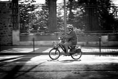 24 heures Motos Le Mans (Pascal Maga) Tags: lemans magiclantern solex 24heuresdumans 50dcanon lesvraisgens pascalmaga photographelemans