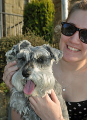 Hi 5, from Holly (littlestschnauzer) Tags: uk family dog pet pets cute home dogs sunshine animals garden fun miniature high paw nikon five small schnauzer mini holly bex april hi emley owners 2015 yorskhire d5000