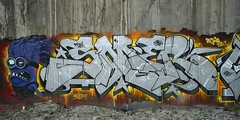 Beijing | Airport Expressway | Street Art (jan.martin) Tags: crew somi street art streetart urban urbanart graffiti mural pékin jingmilu jing mi lu 2015 peking prc 中国 zhōngguó 中华人民共和国 京 abscrew abscru abs asien asia cn pek 北京 beijing chine china