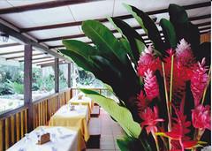 Hotel El Pizote Lodge - Area Social