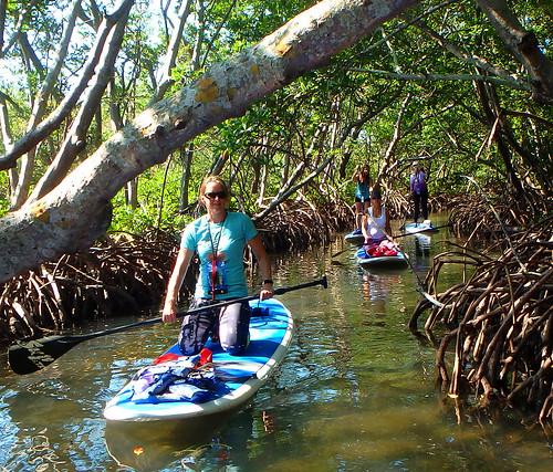 5-1-15-Paddleboard-Yoga-Teacher-Training-Sarasota-FL 17