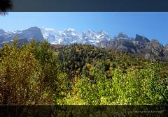When you get spellbound to see variation around..!! (koushikzworld) Tags: mountain nature trekking photography fuji indian sony himalayas ganga gangotri gomukh carlzeiss shivling bhagirathi uttarakhand gaumukh koushikzworld koushikbanerjee