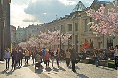 2016-05-03 at 17-24-23 (andreyshagin) Tags: trip travel summer sun building beautiful architecture daylight town nikon day russia moscow sunny tradition andrey d610 shagin