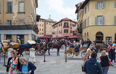 160523_Lucca_Pisa-751884.jpg (FranzVenhaus) Tags: trees streets green castles towers churches restaurants tuscany walls oldtowns