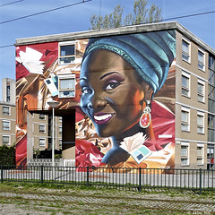 Den Haag Murals : BEYOND & KARSKI (Akbar Sim) Tags: streetart mural denhaag beyond thehague karski agga akbarsimonse laakweg akbarsim