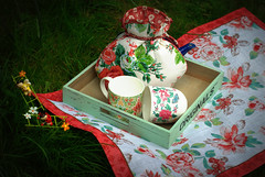 Picnic (Tunde Tenkei) Tags: nikon picnic pretty tea decoration d200 teacozy teatowel stockimage giftware