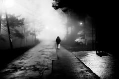 road less traveled (Zlatko Vickovic) Tags: blackandwhite monochrome night noir serbia streetphotography novisad vojvodina srbija streetbw streetphotographybw nightstreetphotography streetstreetphoto streetphotobw zlatkovickovic zlatkovickovicphotography