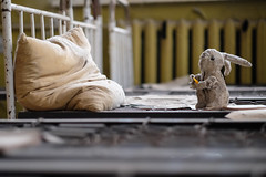 Waiting for something... (andrea.sereno82) Tags: chernobyl school kids exclusion rabbit bed abandoned decay dof fuji 56mm xpro2 pripyat abbandonato forgotten dimenticato desolato letto coniglio pillow cuscino attesa