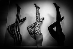 . (robbie ...) Tags: ricoh gr perth wa western australia ladies stockings tights black white monochrome stripes patterns