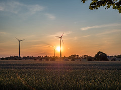 Sunset over the fields (lakkot) Tags: sun green energy farm windmills electricity windpower