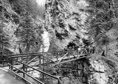 Johnston Canyon 03 (tomomega) Tags: canada canyon banff  johnstoncanyon