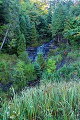 Alger Falls in the Fall (crookedtreephotography) Tags: autumn fall waterfall michigan waterfalls upperpeninsula munising algerfalls