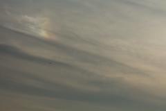 Sunset Sun Dog in an ocean of Grey (Sculptor Lil) Tags: sunset sky london weather clouds sundog atmosphericoptics canon700d dslrsingleexposure