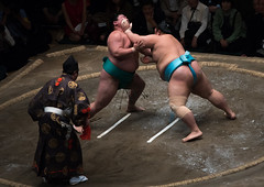 Two sumo wrestlers fighting at the ryogoku kokugikan arena, Kanto region, Tokyo, Japan (Eric Lafforgue) Tags: people male men sport japan horizontal asian japanese tokyo big fight referee asia fighter power martial wrestling fat traditional champion culture traditions lifestyle competition clash ring east indoors tournament ritual leisure sumo inside strength fullframe athlete adults wrestlers adultsonly cultural obese overweight ryogoku 3people competitors kantoregion threepeople colourpicture 2029years japan161089