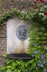 Faun Fountain (s.d.sea) Tags: summer chicago brick english water fountain stone wall gardens 35mm garden botanical illinois spring vines midwest pentax vine northshore glencoe botanic lush faun walled enjoyillinois k5iis
