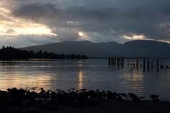 (carlozamagni) Tags: lake lago scotland loch lochlomond scozia