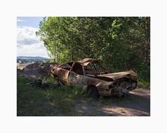 Gustafs 2016 (Karl Gunnarsson) Tags: trees car sweden foliage sverige audi dalarna burntout gustafs em5 sterskommun panasonic20mmf17