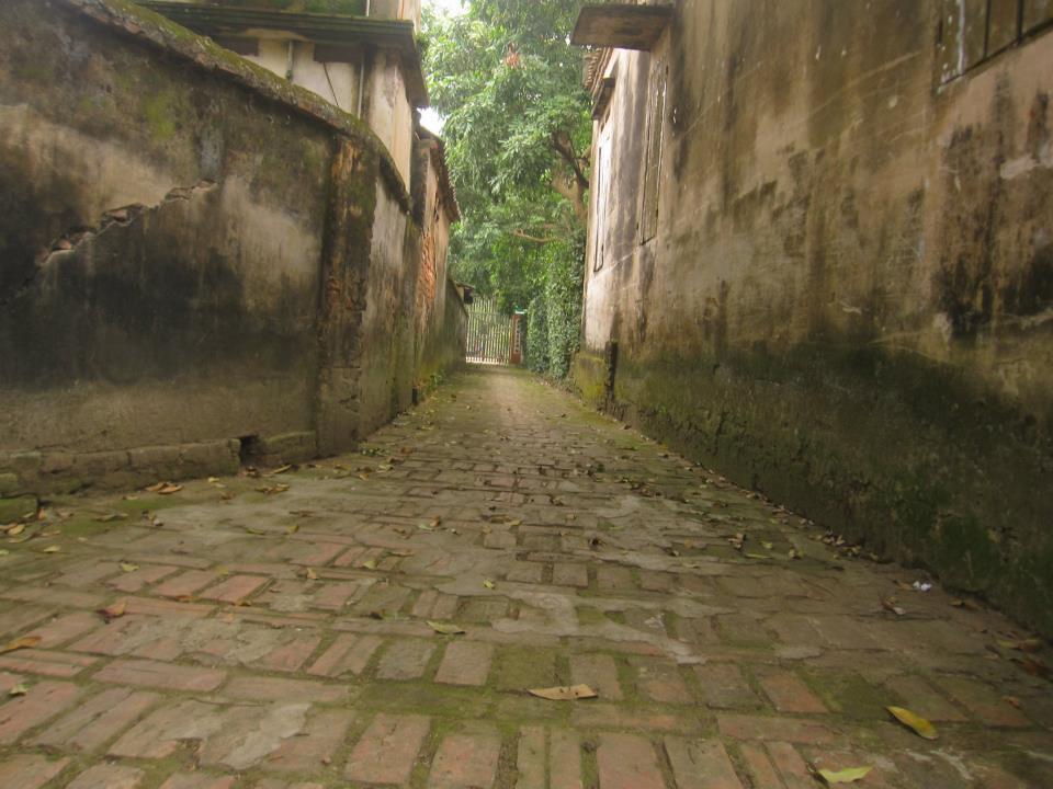3Ở làng Nôm, mọi con đường trong làng đều được lát gạch đỏ
