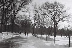 Central Park (Fab Photographe) Tags: newyork centralpark manhattan ilford kiev4am