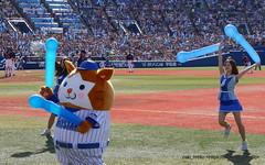 7 / Yokohama Stadium (zaki.hmkc) Tags: baseball cheer db  diana denabaystars diana2015