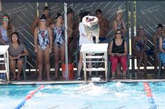2015 Swimming Prep League Finals (altadena_eric) Tags: ca usa us pasadena