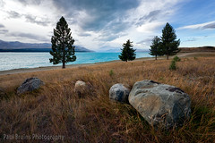 4 Rocks 4 Trees & Approaching Storm (Panorama Paul) Tags: trees newzealand storm grass clouds rocks lakepukaki nikkorlenses nikfilters nikond800 wwwpaulbruinscoza paulbruinsphotography