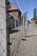 DSC_1553 (Dantenius) Tags: camp germany concentration memorial nazi memory auschwitz genocide germans extermination owicim