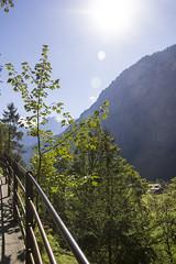 Trummelbachfalle - montanha e parte da trilha com a grade de protecao (CartasemPortador) Tags: bern lauterbrunnen cachoeira quedas interlaken dgua trmmelbach trmmelbachflle