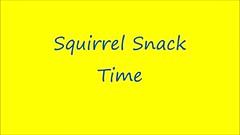 Squirrel Snack Time (harrypope) Tags: squirrel peanuts greysquirrel