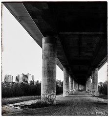 No. 150/365 (MsFerret_Art) Tags: bw nikon autobahn sw brcke ghetto trist berfhrung d5100