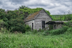 Off the road (DeniseDewirePhotography) Tags: building abandoned field grass vintage washington outdoor deserted colfax palouse