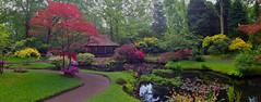 Japanese garden 11 (Frans Schmit) Tags: japanesegarden denhaag thehague clingendael japansetuin fransschmit