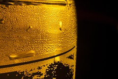 Cold Effect Macro (lukeshepherd875) Tags: light black cold macro sol wet beer lamp gold one droplets close drink manual improvised f11 bellows