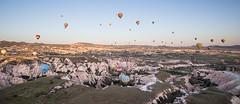 Balloons going down into the valley (tclemitson) Tags: turkey hotairballoon cappadocia goreme kapadokya rosevalley kapadokyaballoons