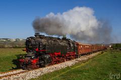 IMG_5768 (feverpictures) Tags: steam loco retro train bulgaria bdz cargo