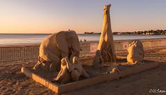 SSS_0185 (Sam 8899) Tags: sand sculpture beach sunrise morning light sky sea color