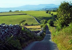 Paths. (Defabled) Tags: paths dyffryn gwynedd ardudwy